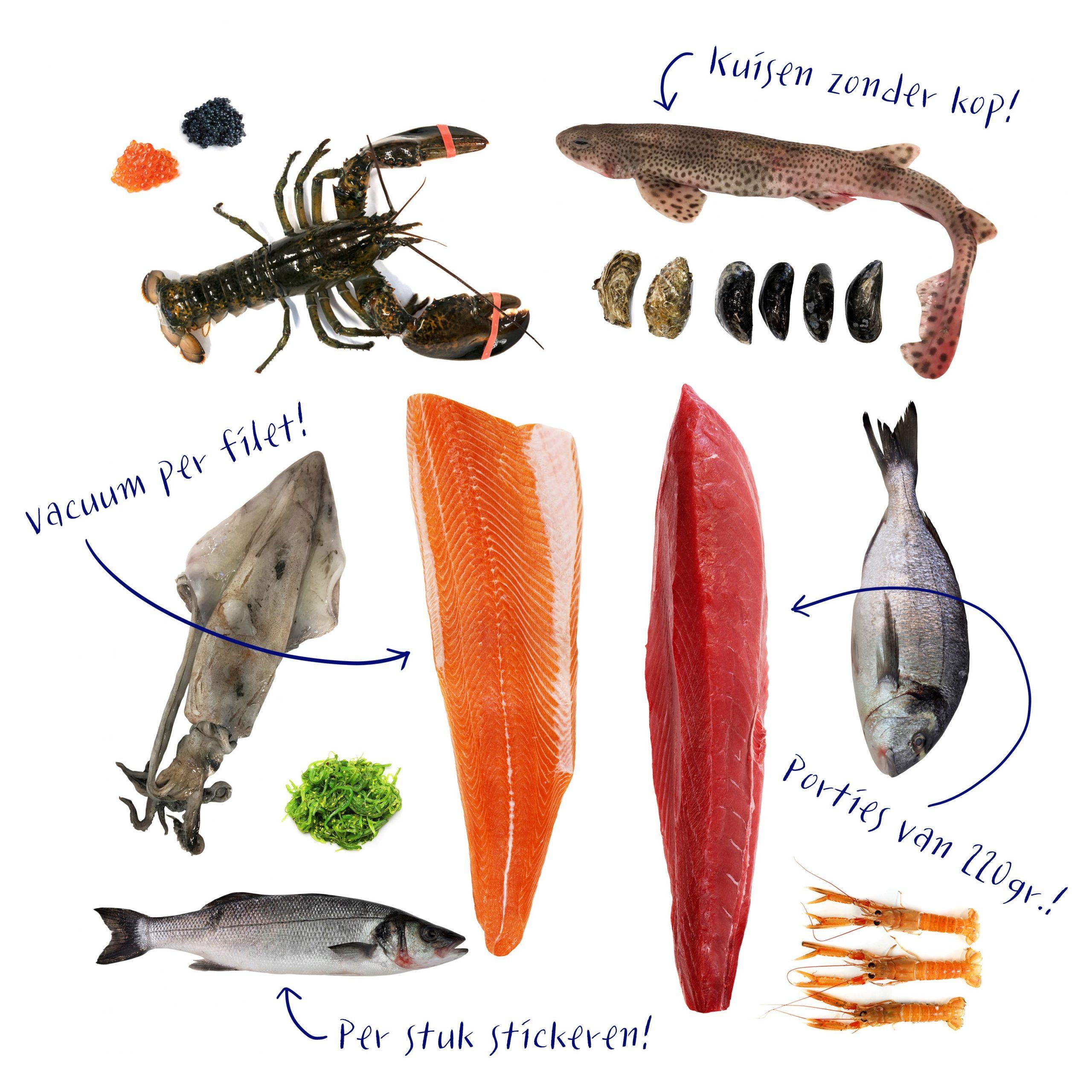 Bewerkingen-vis